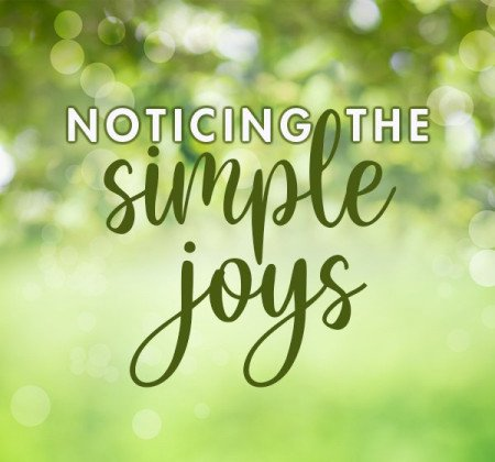 Simple Joy blog thumbnail image v3